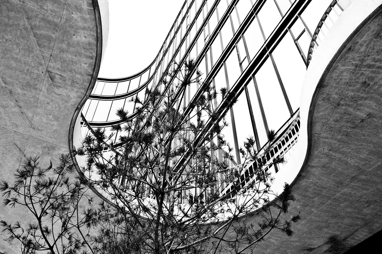 Joshua Tree Photography Arkitektur MG 2254
