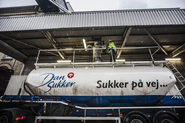 Nordic Sukker 30