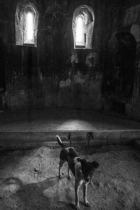 Joshua Tree Photography Rejse Armenia1598